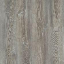 Shaw Floors Clayton Homes Augusta Grey Chestnut 07062_C172Y