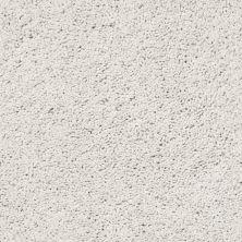Shaw Floors SFA Rich Opulence Lg Glacier Ice 00500_CC08B