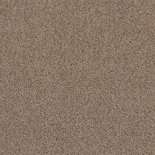 Shaw Floors Caress By Shaw Rich Opulence Lg Raw Wood 00720_CC08B