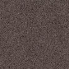 Shaw Floors Caress By Shaw Rich Opulence Lg Burma Brown 00752_CC08B