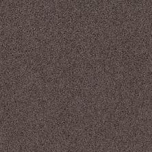 Shaw Floors Caress By Shaw Rich Opulence Lg Burma Brown 00752_CC08B