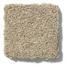 Shaw Floors SFA Cashmere I Lg Pecan Bark 00721_CC09B