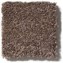 Shaw Floors SFA Cashmere I Lg Spring – Wood 00725_CC09B