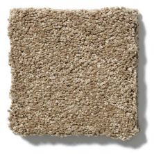 Shaw Floors SFA Cashmere II Lg Pebble Path 00722_CC10B