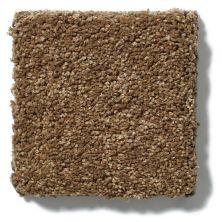 Shaw Floors SFA Cashmere II Lg Tobacco Leaf 00723_CC10B