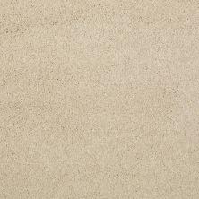 Shaw Floors Cashmere III Lg Yearling 00107_CC11B