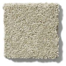 Shaw Floors Cashmere III Lg Spruce 00321_CC11B