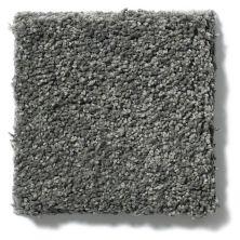 Shaw Floors Cashmere III Lg Onyx 00528_CC11B