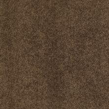 Shaw Floors Cashmere III Lg Bison 00707_CC11B
