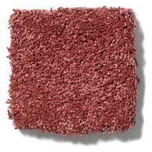 Shaw Floors Cashmere III Lg Cranberry 00821_CC11B