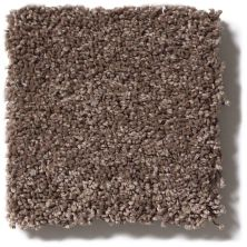 Shaw Floors SFA Cashmere Iv Lg Spring – Wood 00725_CC12B