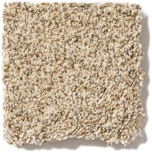 Shaw Floors Caress By Shaw Devon Classic II Lb Toasted Grain 0241B_CC14B