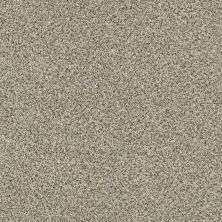 Shaw Floors SFA Devon Classic II Lb Drizzle 0340B_CC14B