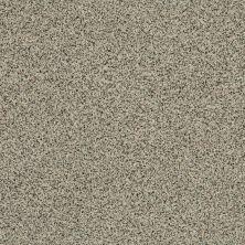 Shaw Floors SFA Angora Classic I Lg Cormo 0150A_CC17B