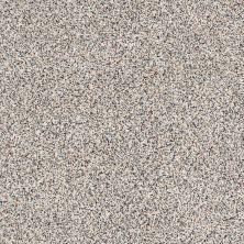 Shaw Floors Caress By Shaw Angora Classic I Lg Cobblestone 0551A_CC17B