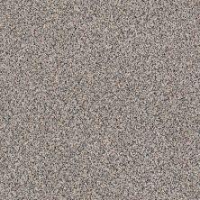Shaw Floors Caress By Shaw Angora Classic I Lg Roving 0552A_CC17B