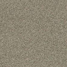 Shaw Floors Caress By Shaw Angora Classic I Lg Spindle 0751A_CC17B