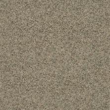 Shaw Floors SFA Angora Classic II Lg Wensleydale 0733A_CC18B