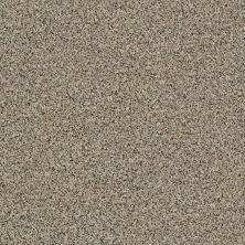 Shaw Floors SFA Angora Classic Iv Lg Raw Sugar 0252A_CC20B