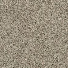 Shaw Floors SFA Angora Classic Iv Lg Walnut Shell 0750A_CC20B