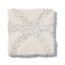 Shaw Floors SFA Appreciation Lg Soft Fleece 00101_CC22B