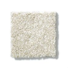 Shaw Floors SFA Milford Sound Lg Soft Fleece 00101_CC26B