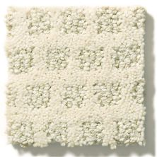 Shaw Floors SFA My Expression Lg Soft Fleece 00101_CC28B