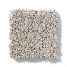 Shaw Floors SFA Subtle Flair Lg Soft Fleece 00101_CC29B
