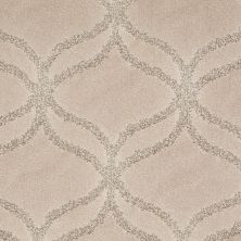 Shaw Floors Value Collections Appreciation Lg Net Fawn 00110_CC36B
