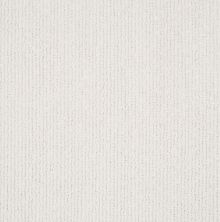 Shaw Floors Value Collections Tranquil Waters Lg Net Calm 00101_CC40B