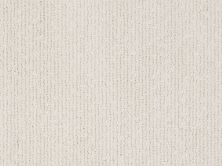 Shaw Floors Value Collections Tranquil Waters Lg Net Awaken 00104_CC40B