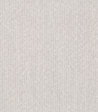 Shaw Floors Value Collections Tranquil Waters Lg Net Meditative 00501_CC40B