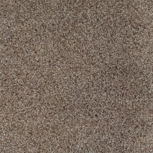 Shaw Floors Value Collections Tranquil Waters Lg Net Gradient 00504_CC40B