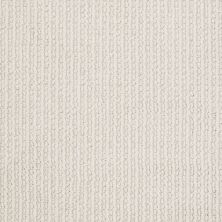 Shaw Floors Value Collections All At Once Lg Net Mohair 00102_CC41B