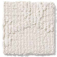 Shaw Floors Value Collections Your World Lg Net Mohair 00102_CC43B