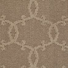 Shaw Floors Value Collections Your World Lg Net Southern Andes 00202_CC43B