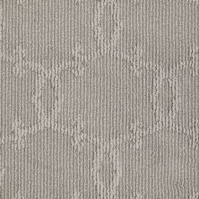 Shaw Floors Value Collections Your World Lg Net Arctic Frost 00503_CC43B
