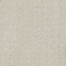 Shaw Floors Value Collections Luxe Classic Lg Net Suffolk 00103_CC44B