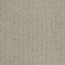 Shaw Floors Value Collections Luxe Classic Lg Net Crete 00501_CC44B