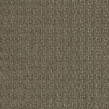 Shaw Floors Value Collections Luxe Classic Lg Net Tibetan Plateau 00504_CC44B