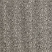Shaw Floors Value Collections Luxe Classic Lg Net Birch Bark 00522_CC44B
