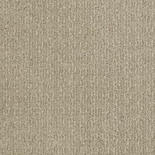 Shaw Floors Value Collections Luxe Classic Lg Net Panama 00700_CC44B