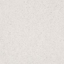 Shaw Floors Value Collections Ombre Whisper Lg Net Calm 00101_CC45B