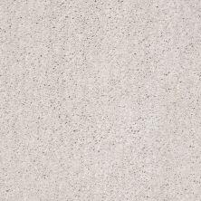 Shaw Floors Value Collections Ombre Whisper Lg Net Meditative 00501_CC45B