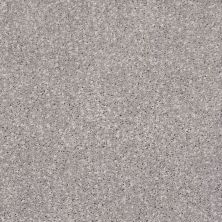 Shaw Floors Value Collections Ombre Whisper Lg Net Dusty Lilac 00900_CC45B