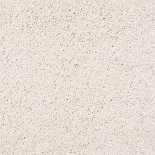 Shaw Floors Value Collections Rich Opulence Lg Net Delicate 00103_CC46B
