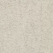 Shaw Floors Value Collections Rich Opulence Lg Net Mist 00106_CC46B