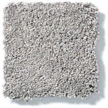 Shaw Floors Value Collections Cashmere I Lg Net Birch Bark 00522_CC47B