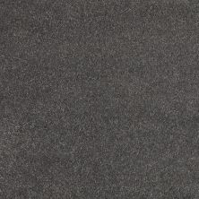 Shaw Floors Value Collections Cashmere II Lg Net Armory 00529_CC48B