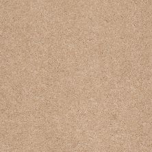 Shaw Floors Value Collections Cashmere II Lg Net Maplewood North 00600_CC48B